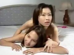 penglai seazan - asian flower - 6