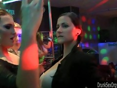 moist cuties dancing erotically in a club